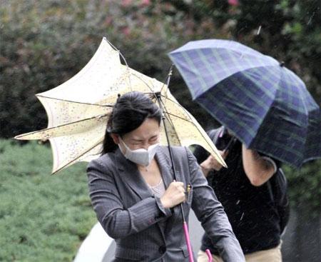 Siêu bão Roke tàn phá Nhật Bản, 4 người chết