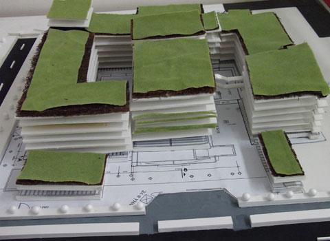 Phủ xanh học đường bằng sản phẩm từ rác