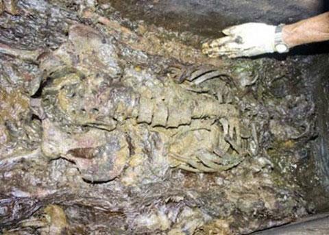 Xác ướp hơn 200 năm ở Đồng Nai là nữ