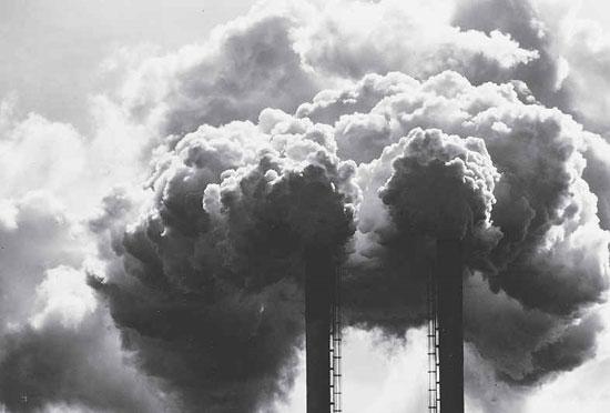 WHO kêu gọi cải thiện chất lượng không khí