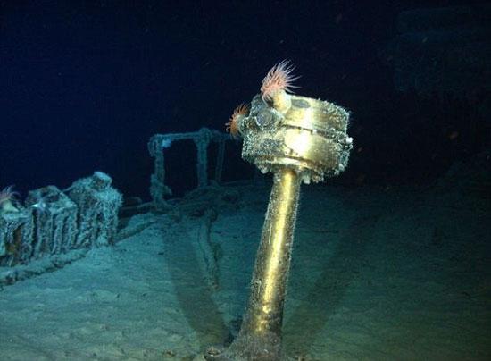 Kho báu dưới nước vừa mới được tìm thấy.