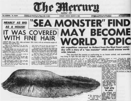 Nhiều năm đã trôi qua, khoa học kỹ thuật đã tiến bộ hơn rất nhiều nhưng đến nay một loạt xác động vật khổng lồ, kỳ lạ dạt vào bờ biển dưới đây vẫn còn là bí ẩn. Một số được cho là của cá voi nhưng đa phần chúng vẫn chưa được xác định là của loài sinh vật nào.