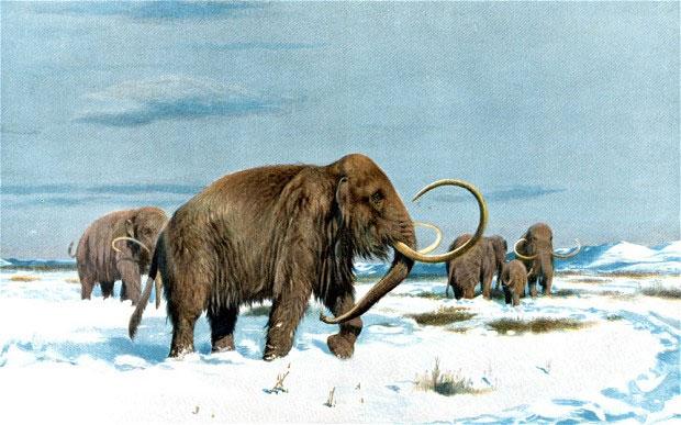 Hình minh họa một con voi ma mút thời tiền sử.