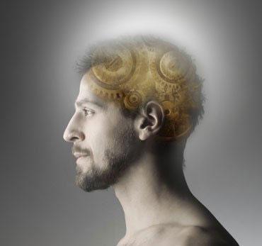 Một tế bào có thể lão hóa cả bộ não