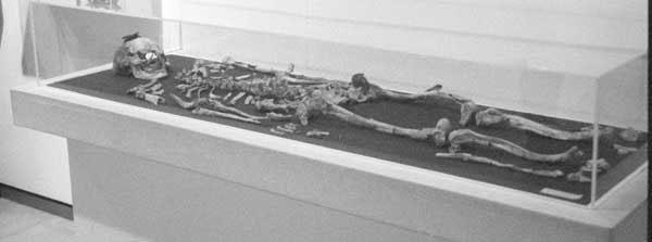 Bộ xương bị đốt được tìm thấy trong một ngôi mộ hoàng gia.