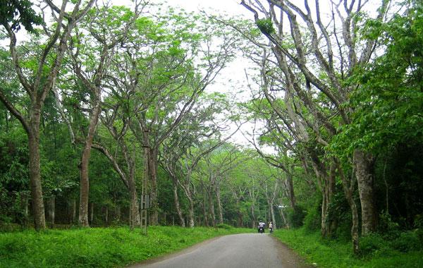 Ninh Bình xây công viên động vật hoang dã quốc gia