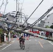 Lốc xoáy tại Nhật Bản làm gần 70 người bị thương
