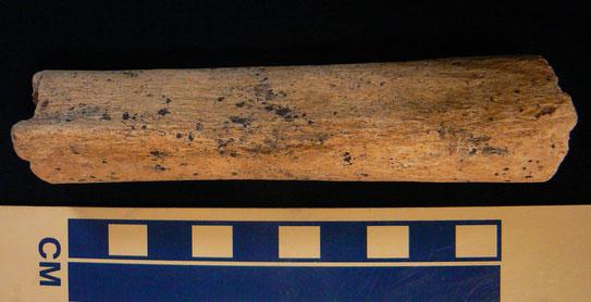 Mảnh xương chân cổ nhất nước Anh