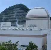 Ở gần nhà máy điện hạt nhân không mắc bạch cầu