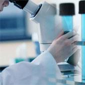 Các nhà khoa học phát hiện loại gene áp chế khối u
