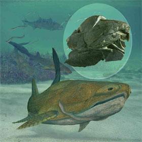 Khai quật hóa thạch cá 429 triệu năm tuổi