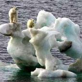 Nhiệt độ Trái Đất tăng 0,3-4,8 độ C trong thế kỷ này