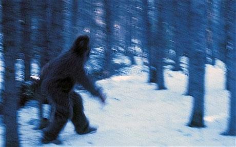 Tìm thấy nơi trú ẩn của Người Tuyết Yetis ở Nga
