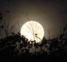 Tối nay trăng tròn nhỏ nhất trong năm