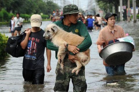 12 triệu người Bangkok thấp thỏm lo bị lụt