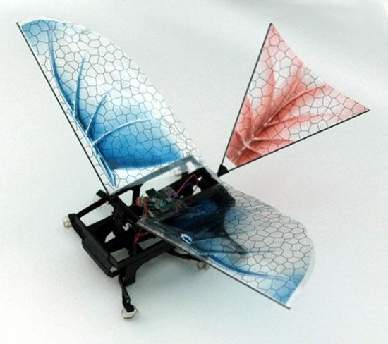 Robot tái hiện bước tiến hóa về khả năng bay của sinh vật