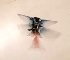 Video: Robot tái hiện bước tiến hóa về khả năng bay của sinh vật