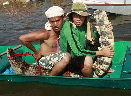 Hiện chưa có thông báo về việc cá sấu xổng chuồng gây hại cho con người.