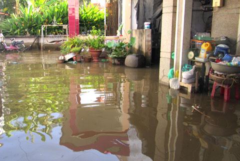 Hàng trăm hộ dân bị nhấn chìm vì vỡ bờ bao