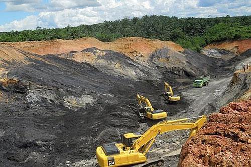 Trồng rừng trên mỏ than
