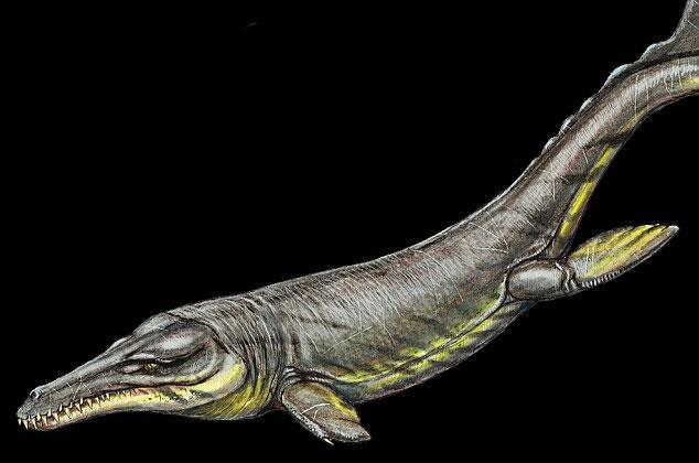 Cá sấu Plesiousuchus có nhiều điểm tương đồng về hộp sọ với T-rex.