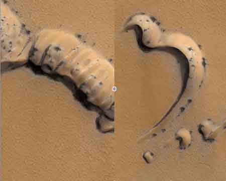Phát hiện nhện tắm nắng trên sao Hỏa