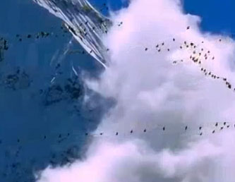 Video: Đại bàng bắt sếu trên bầu trời