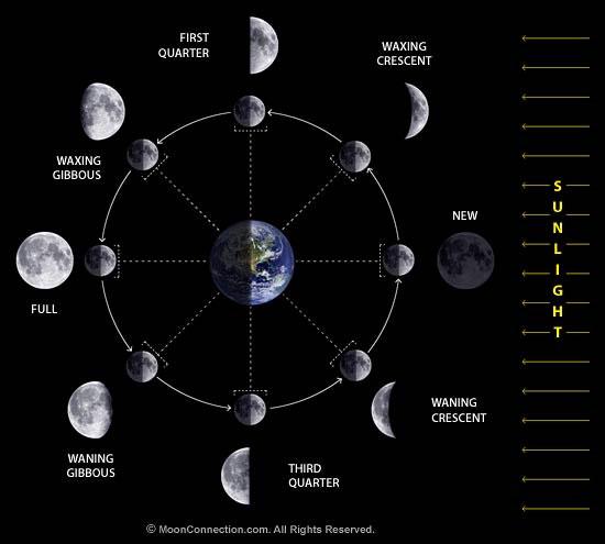 Mặt trăng được tách ra từ Trái Đất?