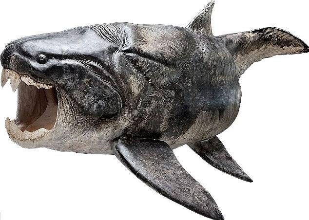 Cá tiền sử có răng như người