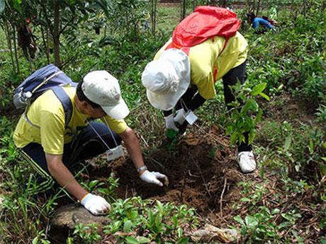Hai tình nguyện viên trồng rừng tại Huế hồi tháng 9. Chương trình Rừng và Đồng bằng Việt Nam của USAID sẽ hỗ trợ việc áp dụng các thực hành sử dụng đất nhằm đối phó với mất rừng, suy thoái rừng.
