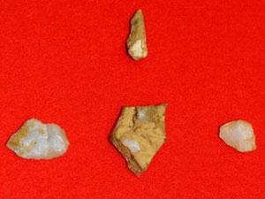 Phát hiện xương người niên đại 12.000 năm ở Nhật
