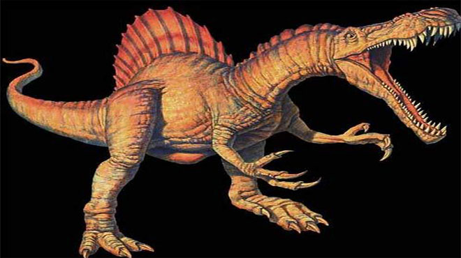 Xác định loài khủng long ăn thịt lớn nhất