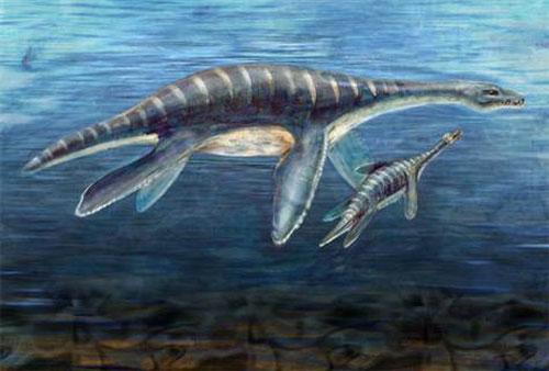 Biển cả đang bị đẩy lùi dần về tình trạng cách đây 110 triệu năm