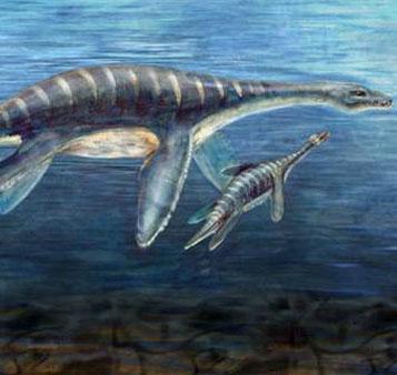 Viễn cảnh đại dương trở về cổ đại vào năm 2100