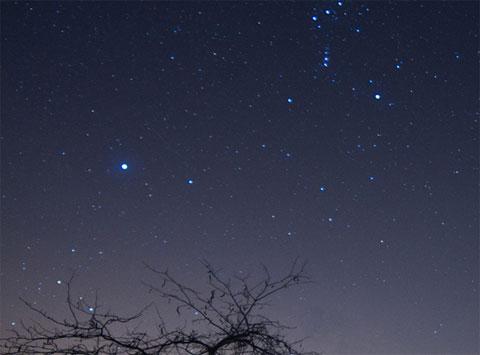 Những ngôi sao có độ sáng lớn trên bầu trời thành phố Brighton, bang Wisconsin, Mỹ khiến những vệt sao băng trở nên mờ ảo khi quan sát bằng mắt.