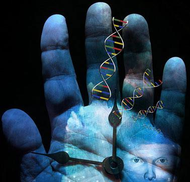 Chứng cứ gene về cuộc xâm lăng địa cầu của loài người