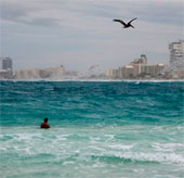 Sức khỏe đại dương đang sụt giảm nghiêm trọng