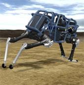 Video: Giới thiệu robot Wildcat