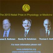 Công bố chủ nhân của Giải Nobel Y học năm 2013