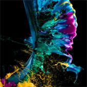 Những khoảnh khắc rực rỡ giao thoa giữa khoa học và hội họa