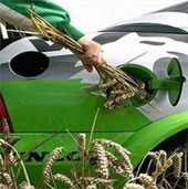 """Tương lai của xe chạy bằng năng lượng """"cỏ"""""""