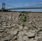 Số người chết do nắng nóng tại châu Âu tăng mạnh