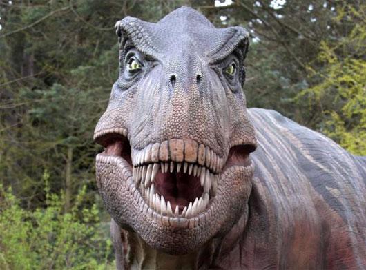 Mô phỏng hình ảnh khủng long Tyrannosaurus rex