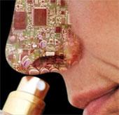 Mũi điện tử phát hiện thực phẩm nguy hiểm