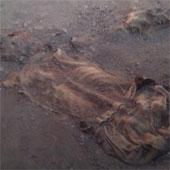 """Bí ẩn xác ướp của những """"người muối"""" ở Iran"""