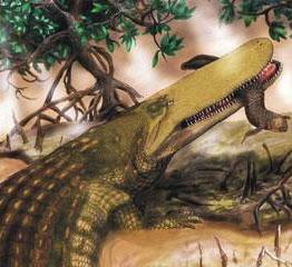 Phát hiện cá sấu cổ đại dài 11 mét