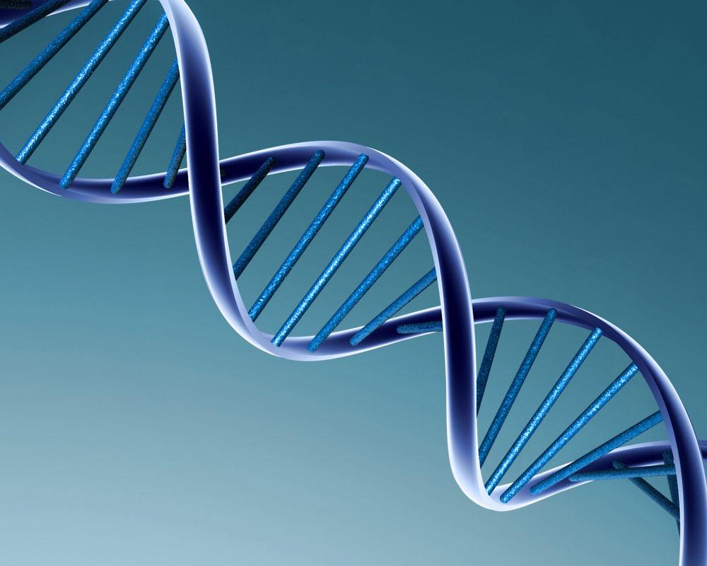 Thử ADN giúp ngăn ngừa bệnh tật