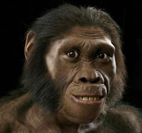 Bộ mặt nửa người nửa vượn của tổ tiên loài người