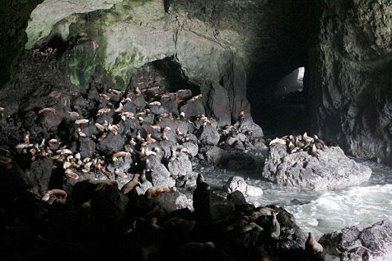 Khám phá 7 hang động biển kì vĩ nhất thế giới