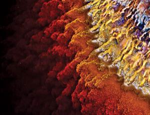 Vi khuẩn thống trị Trái Đất - đây sẽ là cách mà Trái đất kết thúc?